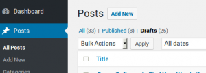 This is a screenshot of the top-left corner of the All Posts administration page.